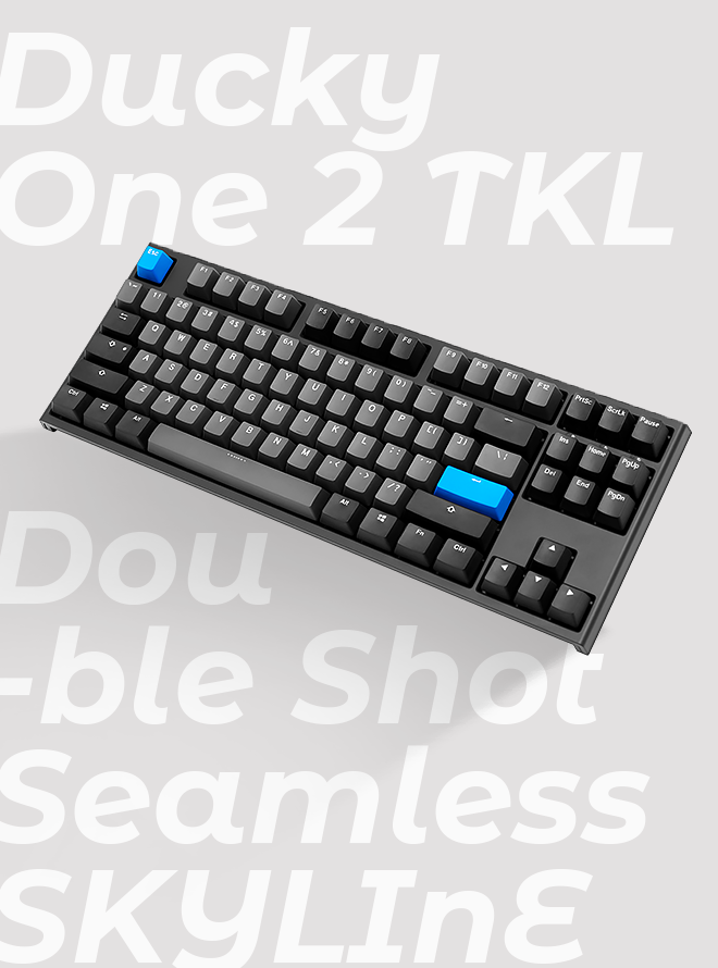 DUCKY ONE 2 TKL SEAMLESS SKYLINE PBT 이중사출 영문