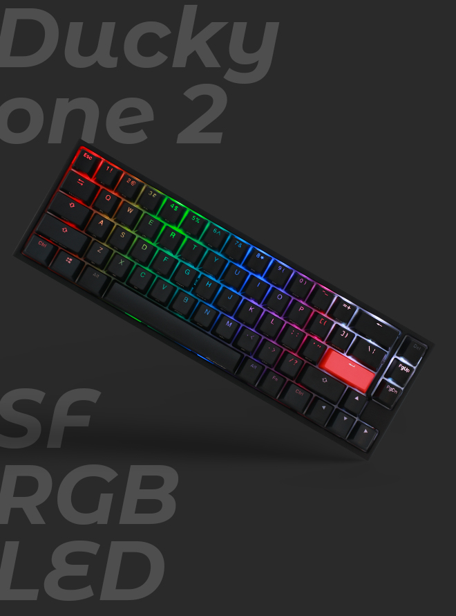 DUCKY ONE 2 SF RGB PBT 이중사출 영문